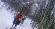 Al Monte Fenton a caballo